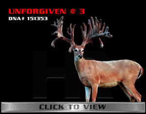 Unforgiven - TX Whitetail Buck bred by James Butler at High Roller Whitetails - Center Texas